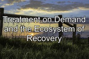 Treatment on Demand and the Ecosystem of Recovery banner